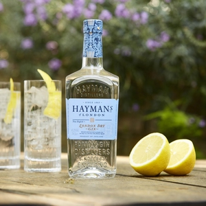 Gin Haymans London dry 750 Cc