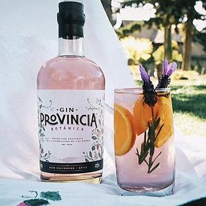 Gin Provincia Botanica 700 Cc