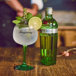 Gin Tanqueray N° TEN 750 cc