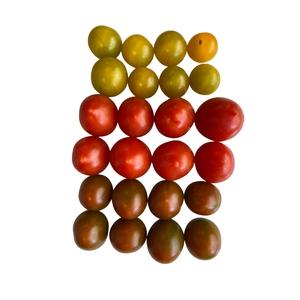 Tomate Cherry Unidad