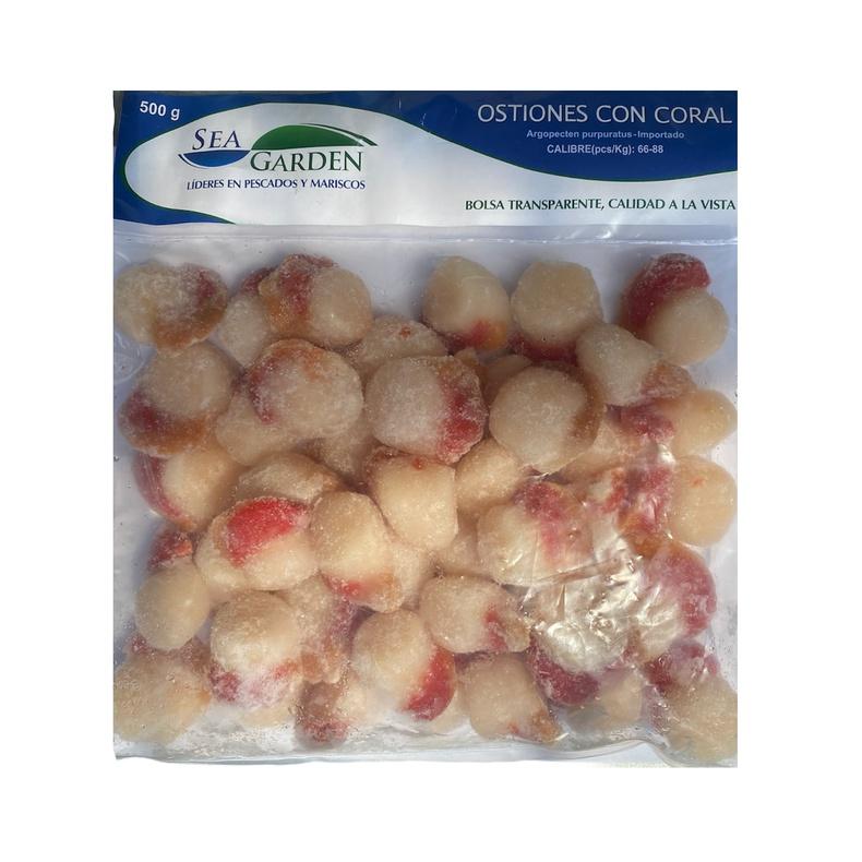 Ostion con coral 40-60 500gr (buba)