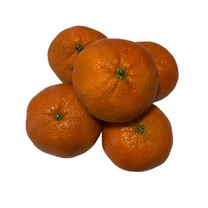Mandarina Clementina  Kg (Corte de 1,00 kg)
