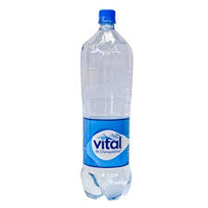 Agua Vital con gas 1,6 Lts